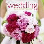 wedding - v.a