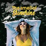 the smell of sunshine - v.a