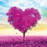 Các bài Hát Tiếng Anh Về Tình Yêu Bất Hủ