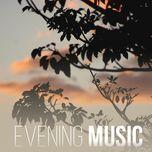 evening music - v.a