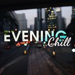 evening chill - v.a