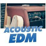 acoustic edm - v.a