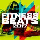 fitness beats 2017 - v.a