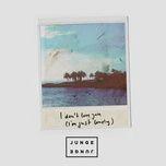 i don't love you (i'm just lonely) (single) - junge junge