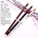 flute rhyme (tieu) - zhang fan