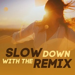 slow down with the remix - v.a