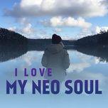 i love my neo soul - v.a
