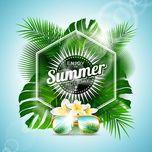 summer days - v.a