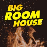big room house - v.a