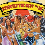 strictly the best vol. 25 - v.a