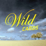 wild cards - v.a