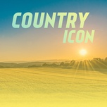 country icon - v.a