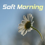 soft morning - v.a