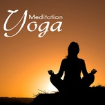 music for yoga and meditation - v.a