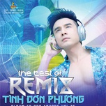 tinh don phuong (the best of remix - vol. 35) - dan truong