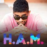 h.a.m. - v.a
