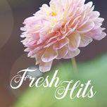 fresh hits - v.a