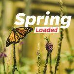 spring loaded - v.a
