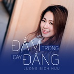 Đắm Trong Cay Đắng (Single)