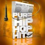 pure... hip hop - v.a
