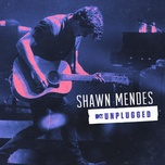 Don't Be A Fool (MTV Unplugged 2017) (Single) - Shawn Mendes