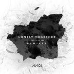 Lonely Together (Alan Walker Remix) (Single)